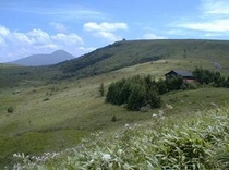 肩からの蓼科山