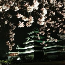 松本城の夜桜♪