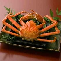 【ズワイ蟹】北陸の冬の味覚、蟹を堪能できる季節到来!*写真はイメージ