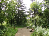 歴史の森『遊歩道』 ペンションから徒歩2分