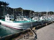 弓ヶ浜漁港の風景 ここから活きのいい魚が水揚げされます