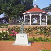*敷島公園/バラ園での「バラ祭り」園内の至る所が美しいバラで彩られます。