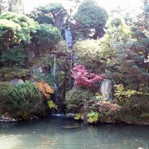 *庭園の眺め/春は新緑、秋は紅葉が美しい日本庭園。お部屋や食事処からご覧いただけます。