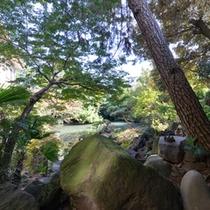 *お部屋からの景観(1F和室8畳)/四季折々の景観に彩られた日本庭園の息吹を肌で感じて。