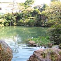 *庭園の眺め/お部屋を囲むように広がる日本庭園。大きな池が印象的です。