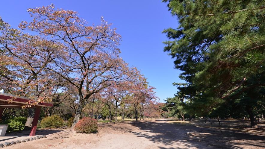 *敷島公園/利根川と広瀬川に挟まれた広大な面積を有する公園。晴れた日の散策に◎