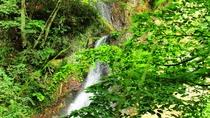 周辺 雨の日に見られる滝