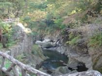10月25日らいらい峡