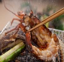 【 追加料理 】伊勢海老の網焼き(期間限定・要問合せ)