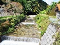 【周辺】施設近くを流れる吉野川