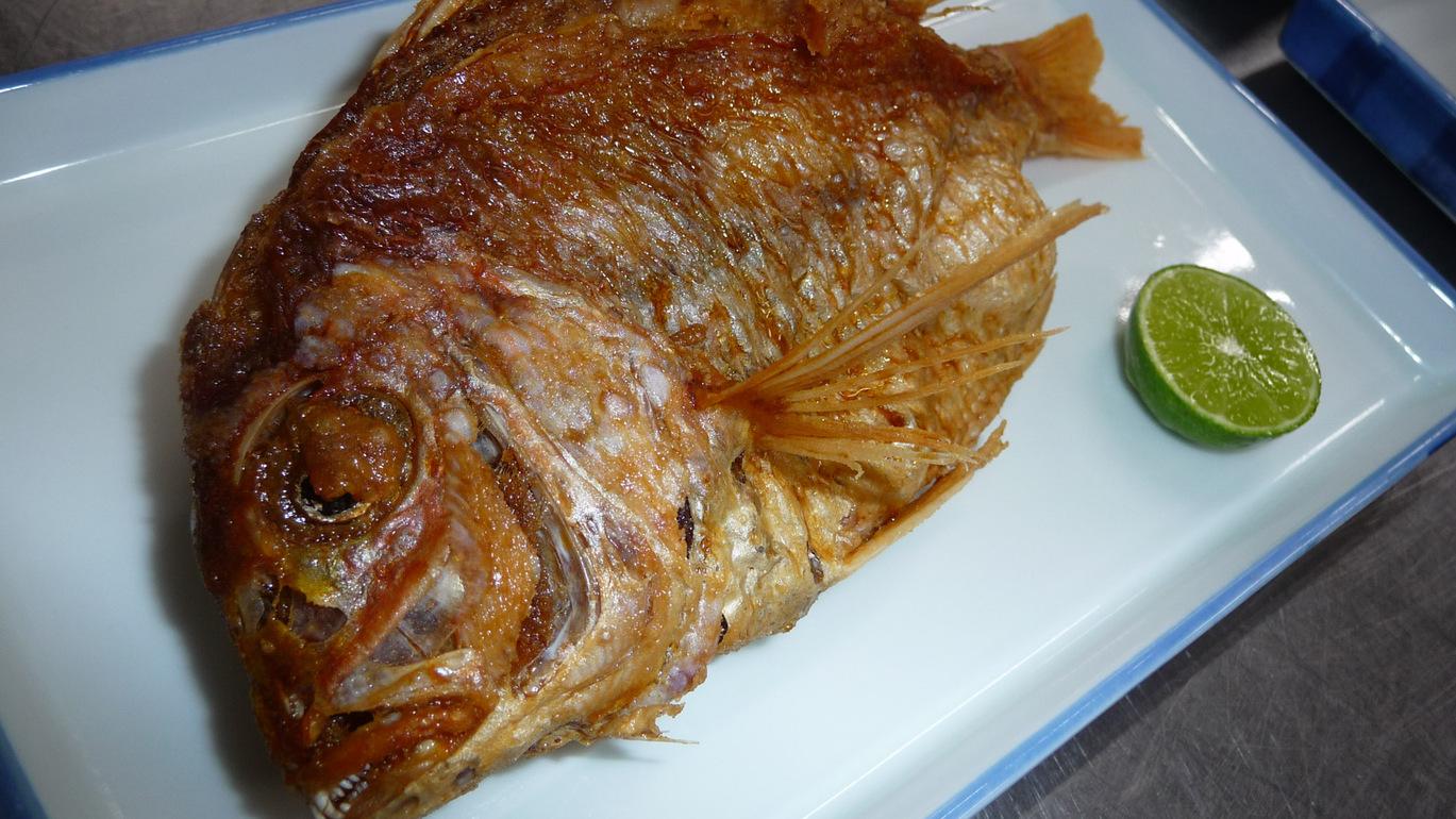 *(夕食単品)瀬戸内の海の幸をお楽しみください。