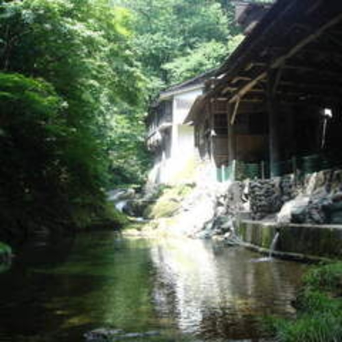 夏の渓流風景