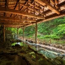 開湯220年の天然岩風呂