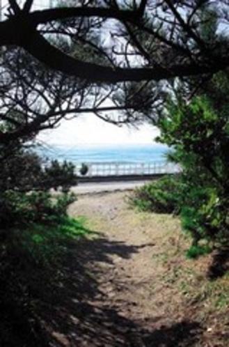 岩井海岸への抜け道
