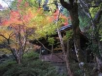 '10京の上臈秋景