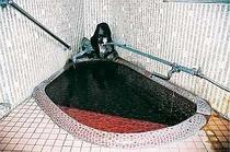 2人用のこじんまりとした貸切風呂もあり