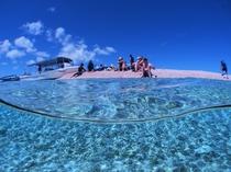 バラス島シュノーケルツアーもやってます!きれいな魚がたくさん見れます。