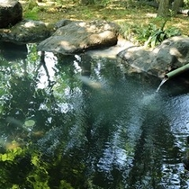 【露天風呂】岩風呂の湯口