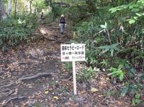 笹ヶ峰一周歩道