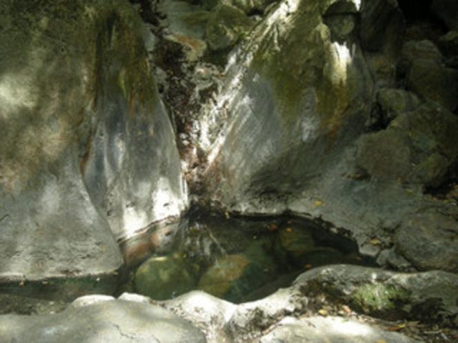 探勝路にある霧島最古と言われる岩風呂
