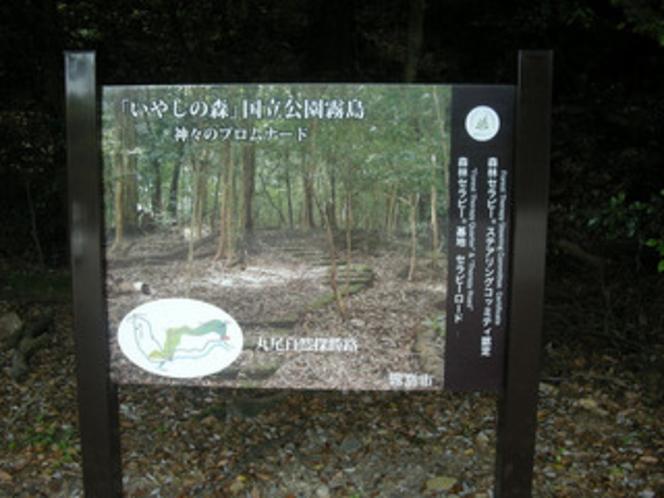 探勝路入口にある森林セラピー案内看板