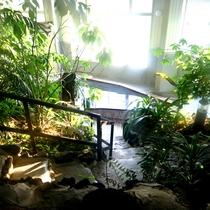 ジャングル風呂4
