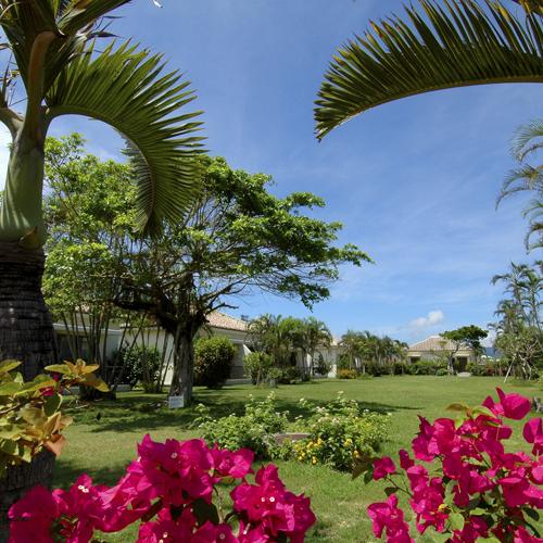 【フサキガーデン】季節毎に変わる南国独特の木々の下で、癒しの時間を体験ください
