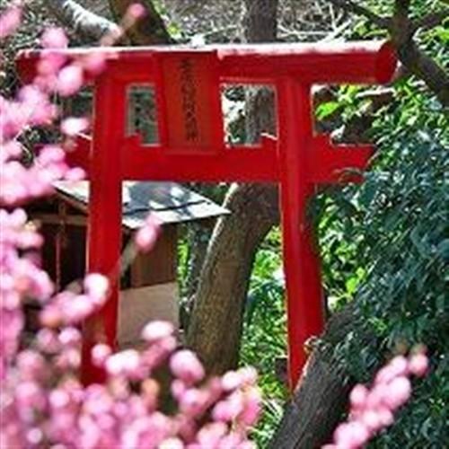 戦前から当荘にある日本庭園のお稲荷さん