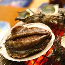 夕食一例:歯ごたえと旨みがクセになるアワビや貝類