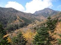 八ヶ岳登山道