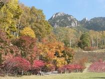 みずがき山の紅葉