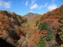 川俣渓谷(紅葉)