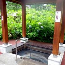 *【赤倉温泉足湯公園】なんと!ペット専用の足湯まで!!