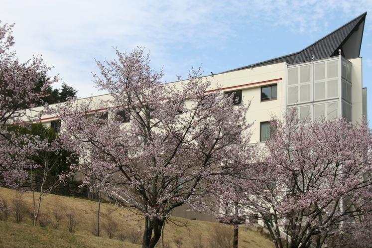 桜とほりでーゆ~四季の郷