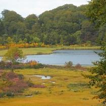 *秋の大沼/季節ごとに違う表情を見せてくれる大沼は散策のおすすめスポット!