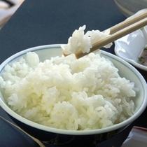 甘みたっぷりの自家製米