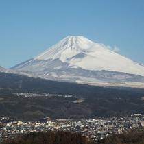 日本一の富士山までは当館からお車で30分ほど。ドライブに最適です♪