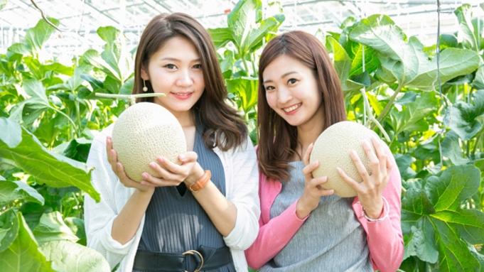 【1日5組限定】 メロン狩り&1/2玉実食付きプラン