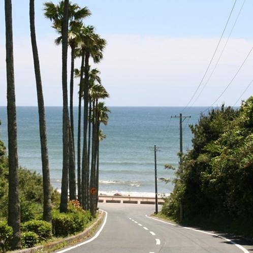 太平洋ロングビーチへ続く坂道 目の前は太平洋