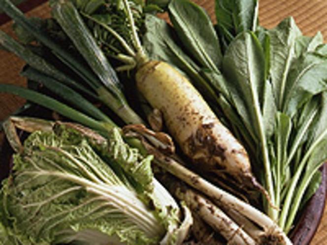 食材イメージ(地野菜)