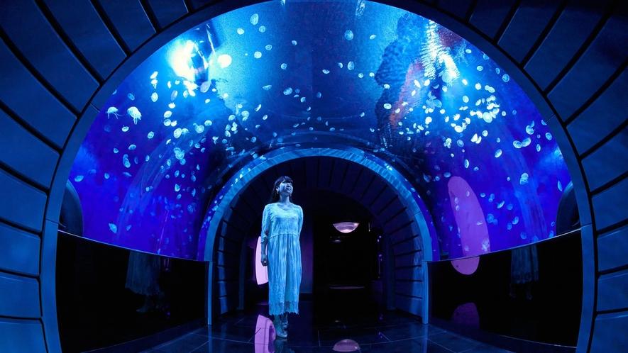 海月空感(くらげくうかん) 都会に浮かぶ「天空のオアシス」サンシャイン水族館