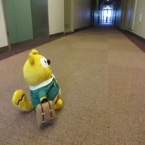 ◆廊下◆な、長いなぁ・・・