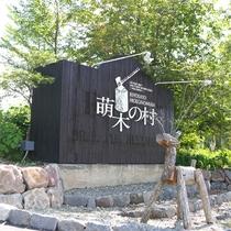 *【萌木の村】清里の緑の中、個性的なショップ・レストラン・オルゴール博物館などが点在しています。