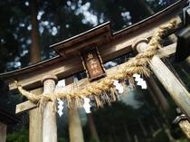 岩室神社。当館から徒歩数分。