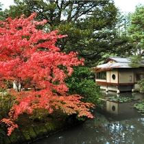 紅葉と茶室