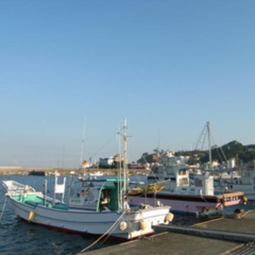 *稲取漁港