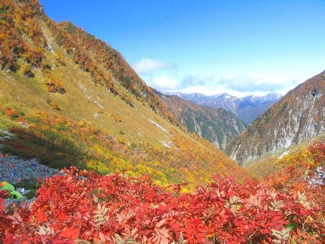 秋の涸沢紅葉(トップページ)