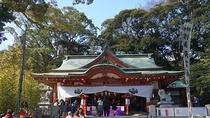 *周辺観光<来宮神社(当館より車で約8分)