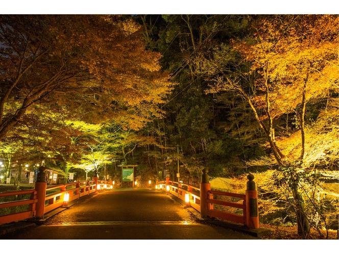 高雄の秋のライトアップ