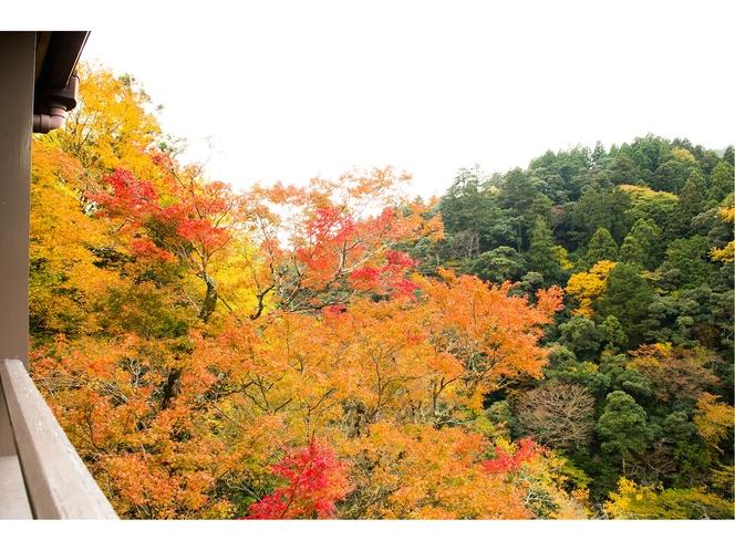 秋の風景・本館からの眺め